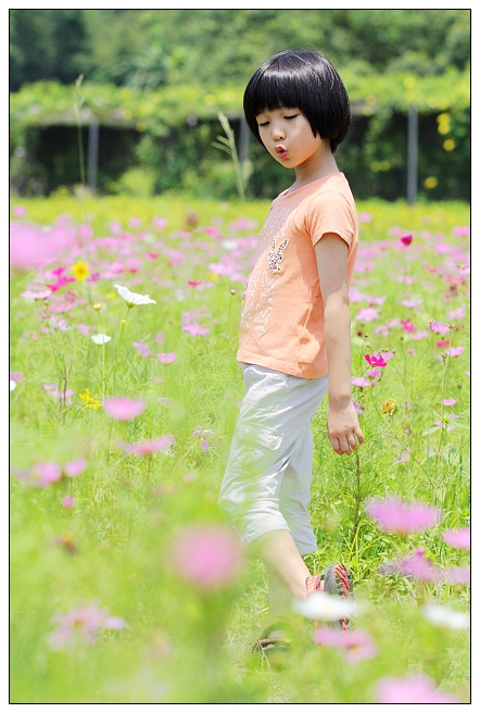 IMG_0086a.jpg